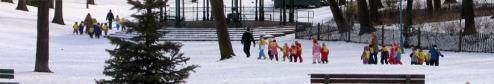 children_in_park_merged_final_resized1.jpg